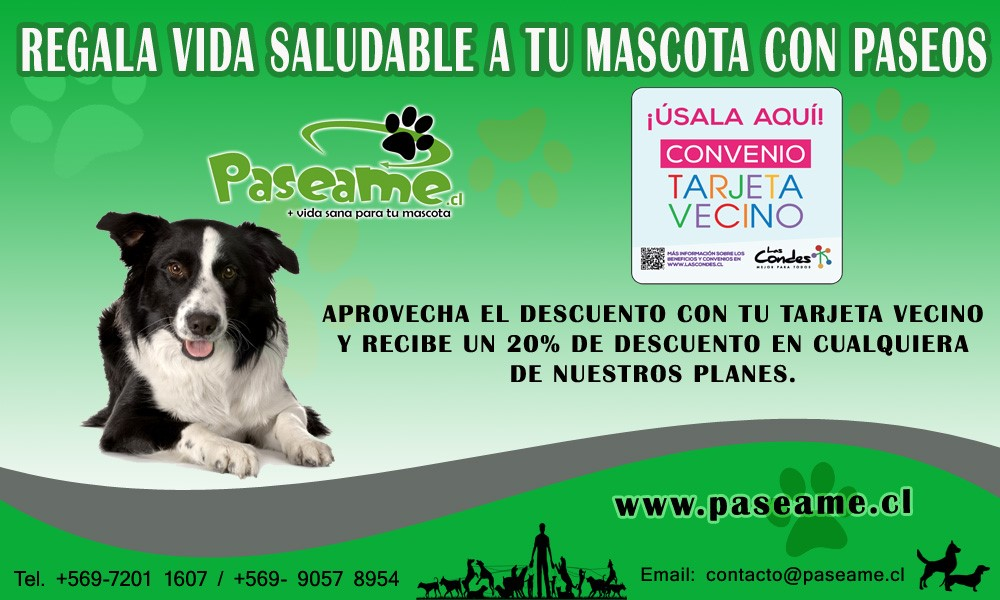 PASEAME FLYER