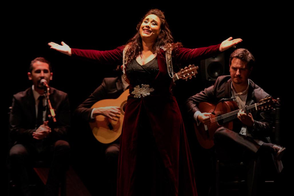 Flamenco y más