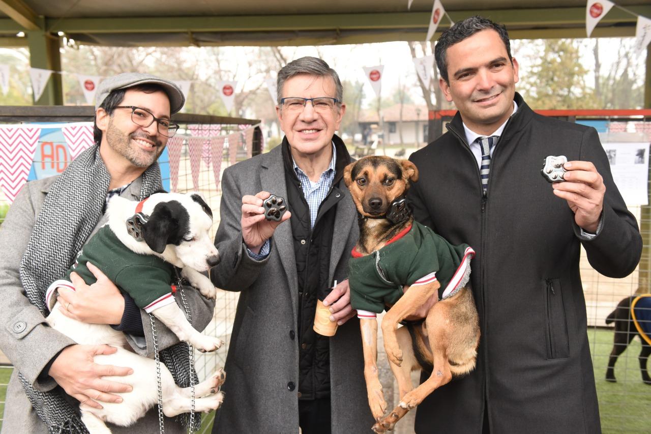 Alcalde Lavín y Alfonso Emperanza, de Claro Chile, muestran el Smart Pet, junto a Bao, el primer perro adoptado durante esta jornada (perrito blanco).