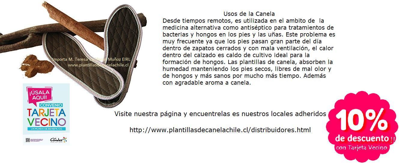 PLANTILLAS DE CANELA PROMO